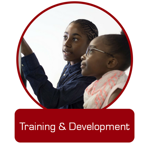 training-&amp-development